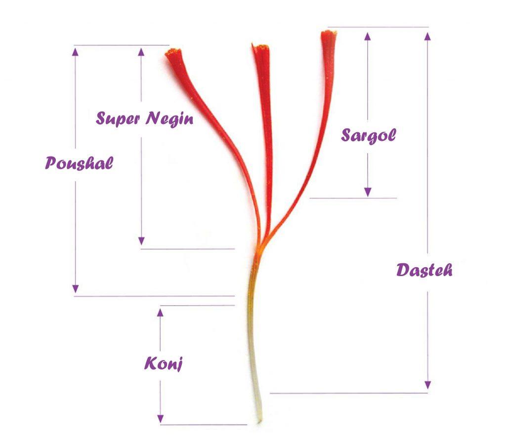 أنواع الزعفران